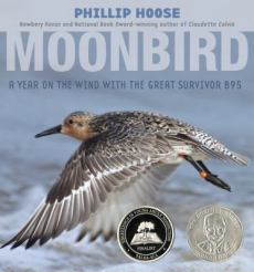 Cover: Moonbird: A Year on the Wind With the Great Survivor B95 by Phillip Hoose